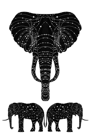 The Constellation of the Elephant by Alex Beeching