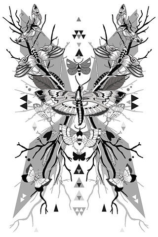 Moth Symmetry 2 by Lucy Joy