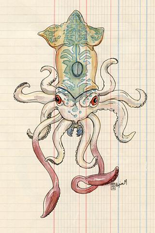 Calamar by Lapin