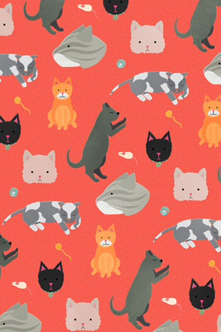 Poolga - Cats - Liz Meyer