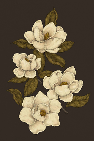 Magnolias by Jessica Roux