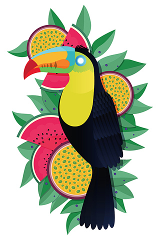 Toucan by James Boast