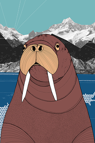 Walrus by Diana Hope