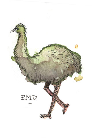 Emu by Luis Mendo / GOOD Inc.