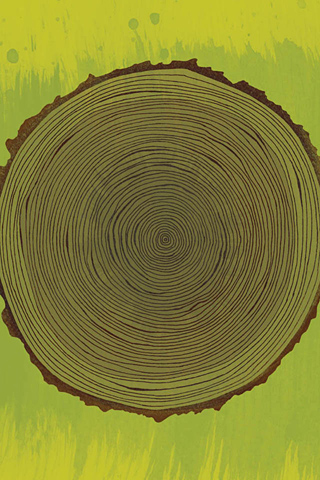 Poolga - Tree Rings - Brian Everett