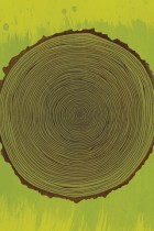 Tree Rings by Brian Everett