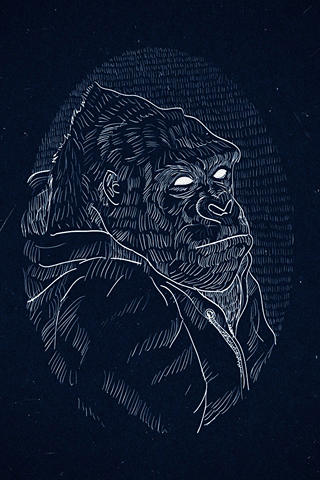Gorilla by AAAGHR